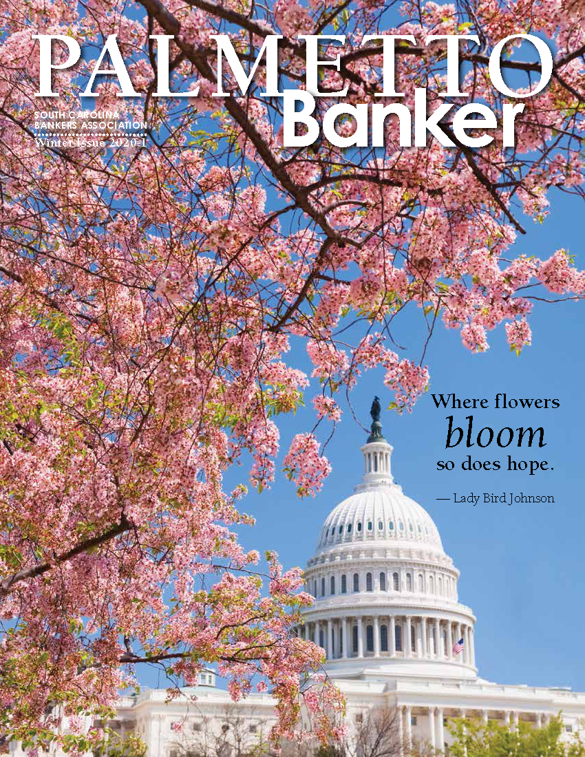 Cover of Palmetto Banker 2020 -1